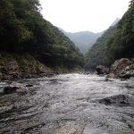雨後の川は。