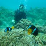 海がまさかの貸切*体験ダイビング