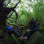 時間をかけて苔むす森へ